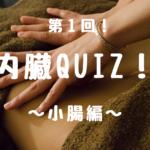 小腸に関するクイズ!
